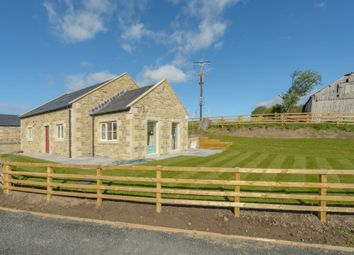 Thumbnail 3 bed detached house for sale in Scout Hill, Chatton, Alnwick