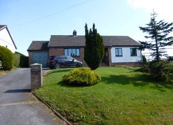 Thumbnail 4 bed bungalow to rent in Porthyrhyd, Carmarthen