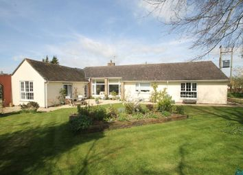 Thumbnail 4 bedroom detached house for sale in Coxley, Wells