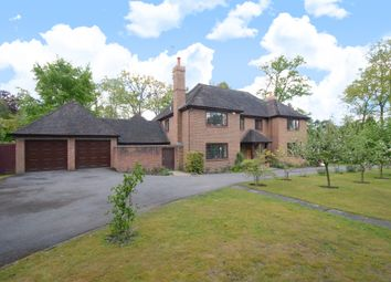 Thumbnail 5 bed detached house to rent in Sunning Avenue, Sunningdale, Ascot