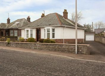 Thumbnail 2 bed bungalow for sale in Hanick Terrace, Forfar, Angus