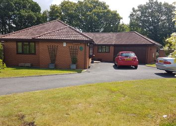 Thumbnail 3 bed detached bungalow to rent in Three Legged Cross, Wimborne