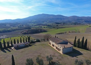 Thumbnail 7 bed farmhouse for sale in Cetona, Cetona, Siena, Tuscany, Italy