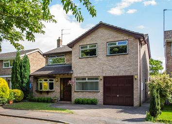 Thumbnail 4 bed detached house for sale in Cherry Hinton Road, Cherry Hinton, Cambridge
