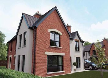 Thumbnail 4 bed detached house for sale in 19, Royal Ascot Mews, Carryduff