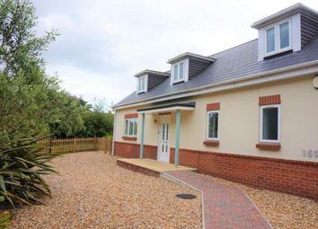 Thumbnail 3 bed bungalow to rent in Wareham Road, Lytchett Matravers, Poole