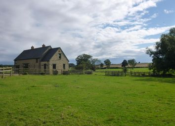 Thumbnail 4 bed property to rent in Leckhampstead, Buckingham