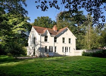 Thumbnail 5 bed detached house to rent in Priory Road, Ascot, Berkshire