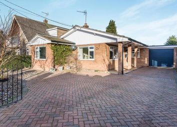 Thumbnail 3 bed bungalow for sale in Brundall, Norwich, Norfolk