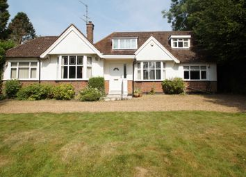 Thumbnail 4 bed detached bungalow for sale in Long Lane, Bovingdon, Hemel Hempstead