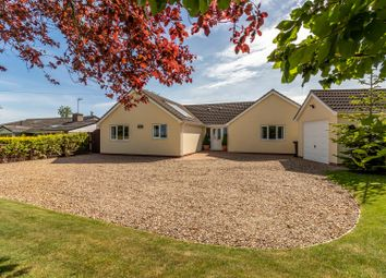 Thumbnail 3 bed detached bungalow for sale in The Causeway, Hitcham, Ipswich