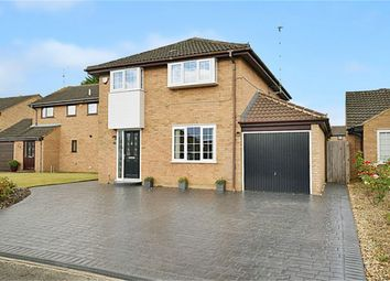 Thumbnail 4 bed detached house for sale in Rush Close, Hartwell, Northampton