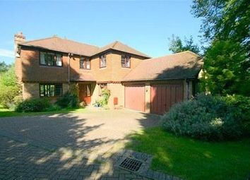 Thumbnail 4 bed detached house to rent in Oakwood Rise, Caterham, Surrey
