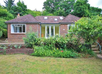 Thumbnail 4 bedroom detached bungalow to rent in Portsmouth Road, Godalming, Surrey