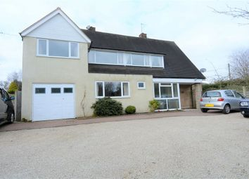 Thumbnail 5 bed detached house to rent in Grange Road, Solihull