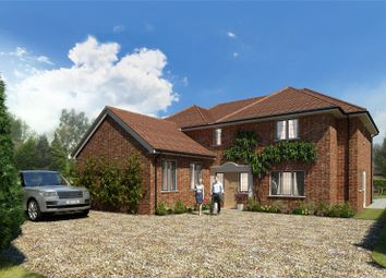 Thumbnail Property for sale in High Elms, Harpenden, Hertfordshire