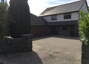 Thumbnail 4 bed detached house for sale in Pantyblodau Road, Blaenau, Ammanford, Carmarthenshire.