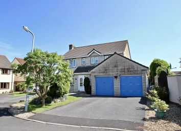 Thumbnail 4 bed detached house for sale in Badgers Green Road, Street