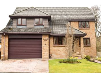 Thumbnail 5 bed detached house for sale in Honeyman Crescent, Lanark