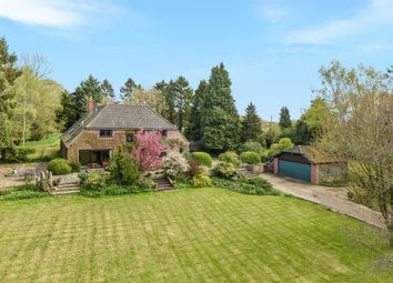 Thumbnail 4 bed detached house for sale in The Street, Flordon, Norwich