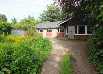 Thumbnail 5 bedroom detached bungalow for sale in The Thorpe, Hemingford Grey, Huntingdon