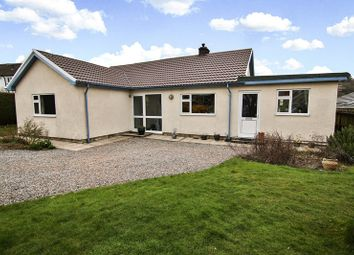 Thumbnail 4 bed detached bungalow for sale in Beaufort Avenue, Llangattock, Crickhowell