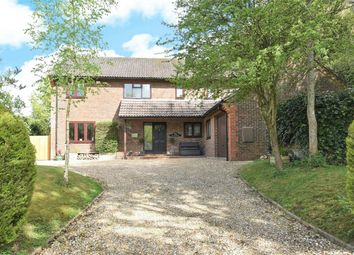 Thumbnail 5 bed detached house for sale in Church Street, Ropley, Hampshire