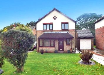 3 bed detached house for sale in Blenkinsopp Court, Peterlee SR8