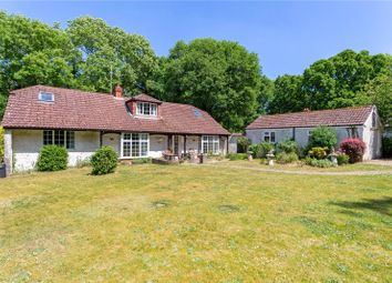Thumbnail 5 bed bungalow for sale in Lower Densome Wood, Woodgreen, Fordingbridge, Hampshire