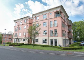 Thumbnail 2 bedroom flat for sale in 26, Danesfort, Belfast