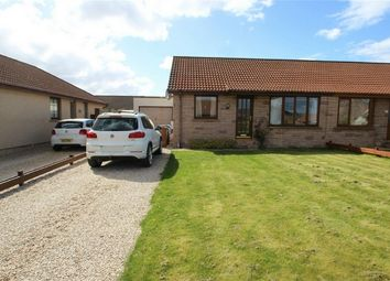 Thumbnail 2 bed semi-detached bungalow to rent in 2 Meadow Gardens, Hopeman, Moray