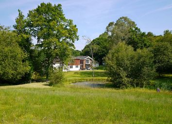 Thumbnail 6 bed equestrian property for sale in Forest Lane, Hightown Hill, Ringwood, Hampshire