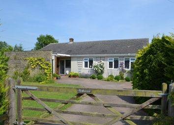 Thumbnail 4 bed detached bungalow for sale in Silver Green, Hempnall, Norwich
