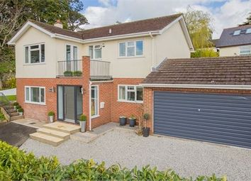 Thumbnail 5 bed detached house for sale in Seymour Road, Newton Abbot, Devon.