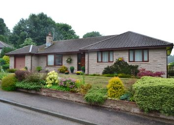 Thumbnail 3 bed detached bungalow for sale in 13 St Leonards Court, Forres