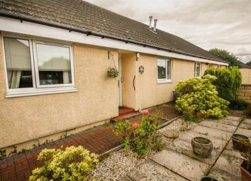 Thumbnail 2 bed bungalow to rent in The Cottages, Millgate, Winchburgh