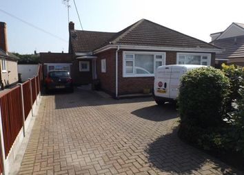 Thumbnail 4 bed bungalow for sale in Alfred Gardens, Wickford