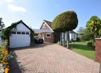 Thumbnail 4 bed bungalow for sale in King Edward Avenue, Burnham-On-Crouch