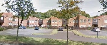 Thumbnail 2 bed flat to rent in Phoenix Park, Hemlington Middlesbrough