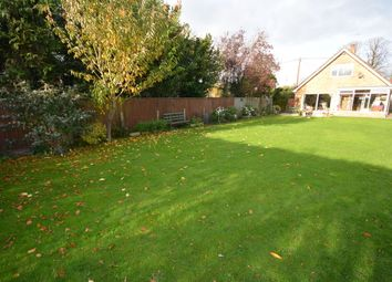Thumbnail 4 bed property to rent in Hall Lane, Oulton, Lowestoft
