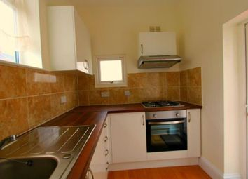 Thumbnail 4 bedroom semi-detached house to rent in Temple Gardens, London