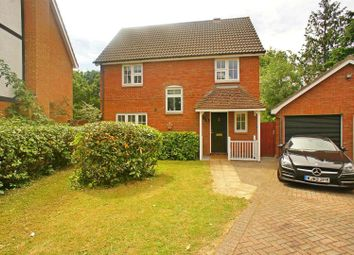 Thumbnail 4 bedroom detached house for sale in Crofton Grove, London
