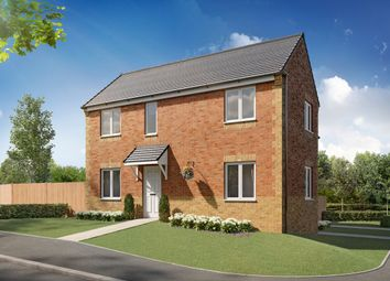 "Thumbnail 3 bedroom semi-detached house for sale in ""Galway"" at Springvale Terrace, Middlesbrough"