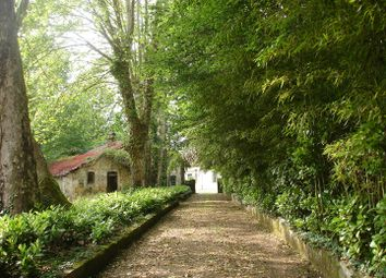 Thumbnail Property for sale in 36 Rue Neuve, 40100 Dax, France