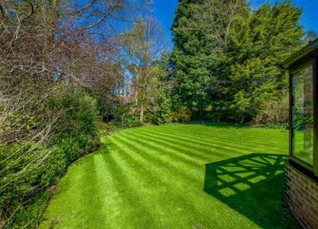 Thumbnail 6 bed detached house for sale in Geffers Ride, Ascot, Berkshire