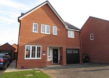 Thumbnail 4 bed detached house to rent in Little Lane, Ravensthorpe, Northampton