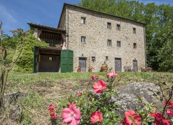 Thumbnail 4 bed town house for sale in Pescia, Pescia, Italy
