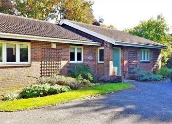 Thumbnail 3 bed bungalow for sale in Churt, Farnham, Surrey