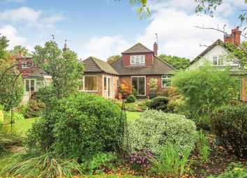 Golden Ball Lane, Maidenhead SL6. 4 bed bungalow