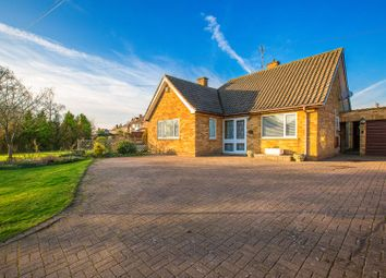 Thumbnail 3 bed detached bungalow for sale in Cottingham Road, Corby